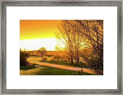 Glowing Sunset Framed Print