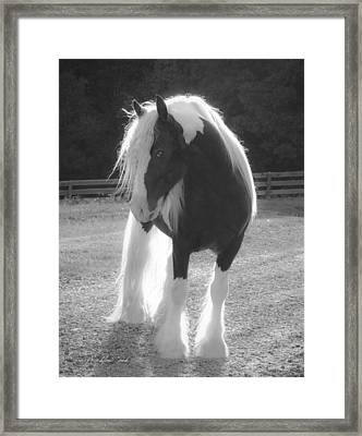 Glowing Framed Print by Terry Kirkland Cook