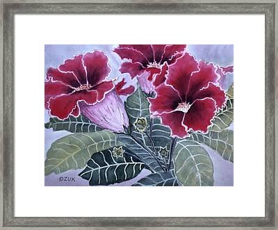 Gloxinias Framed Print