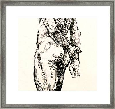Gluteus Maximus Framed Print by Roz McQuillan