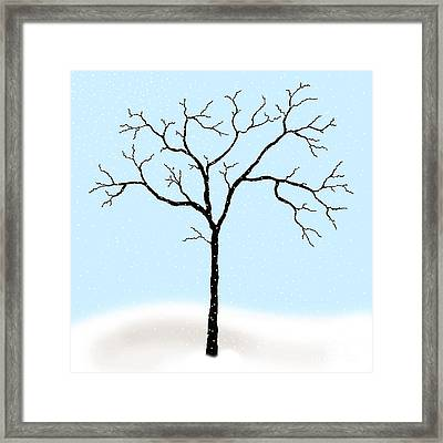 Gnarled In Winter Framed Print