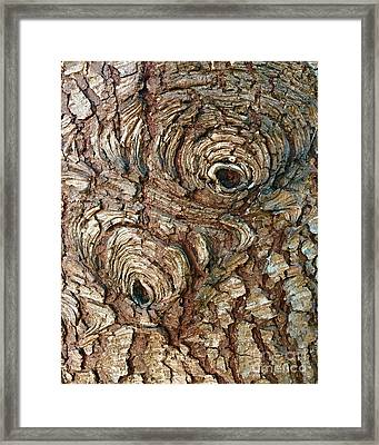 Gnarled Knots Framed Print