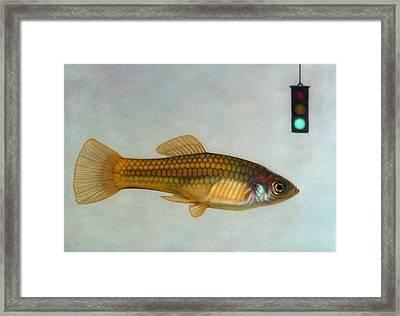 Go Fish Framed Print