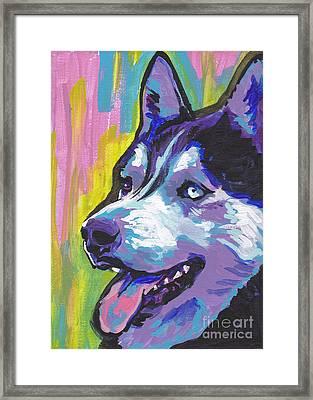 Go Husky Framed Print by Lea S