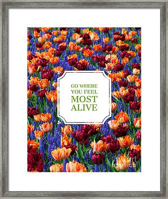 Go Where You Feel Most Alive Poster Framed Print by Edward Fielding