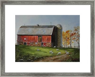 Goat Farm Framed Print