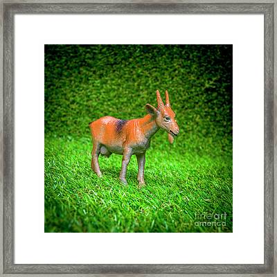 Goat Figurine Framed Print by Bernard Jaubert