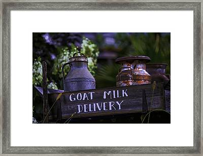 Goat Milk Delivery Framed Print by Garry Gay