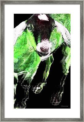 Goat Pop Art - Green - Sharon Cummings Framed Print