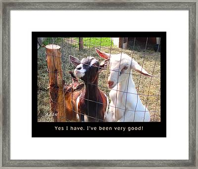 Framed Print featuring the photograph Goats Poster by Felipe Adan Lerma