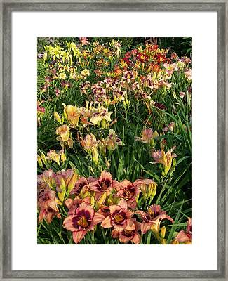 Framed Print featuring the photograph God Is The Artist by Sandy Collier