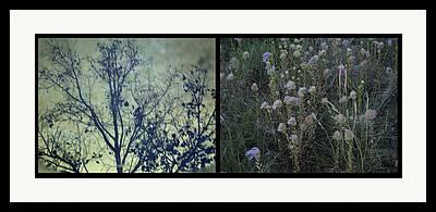 Puddle Digital Art Framed Prints