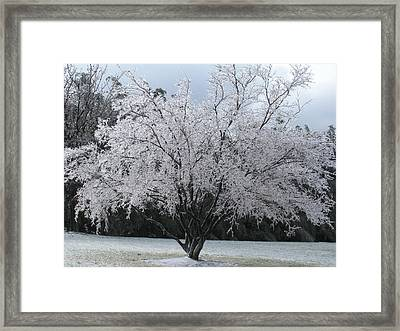 Framed Print featuring the photograph God by Jeanette Oberholtzer