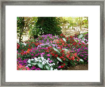 Framed Print featuring the photograph God Using His Paintbrush by Jeanette Oberholtzer