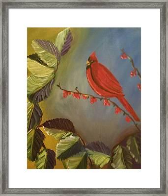 Gods Cardinal Promise Framed Print by Diann Blevins