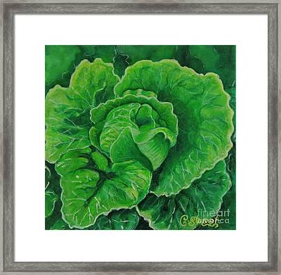 God's Kitchen Series No 5 Lettuce Framed Print by Caroline Street