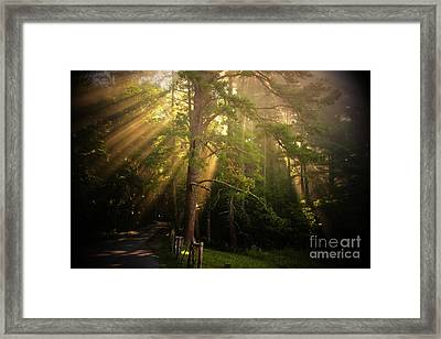 God's Light 2 Framed Print