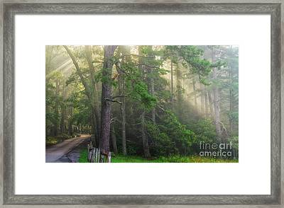 God's Light Framed Print