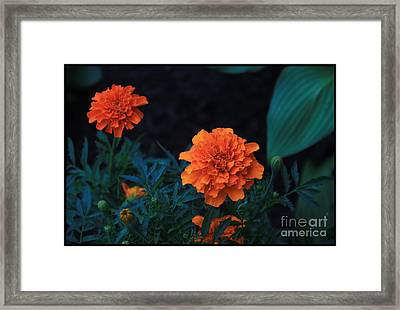 God's Radiance1 Framed Print by Terry Wallace
