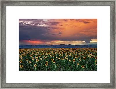 Framed Print featuring the photograph God's Sunflower Sky by John De Bord