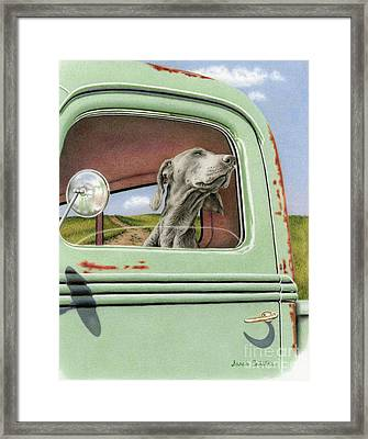 Goin' For A Ride Framed Print