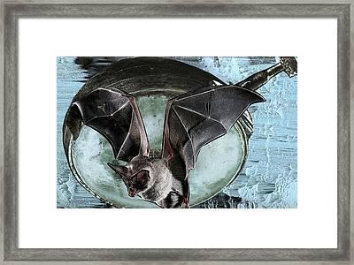 Going Batty Framed Print
