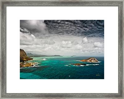 Going Coastal Framed Print by Mitch Shindelbower