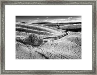 Going Down That Road Framed Print