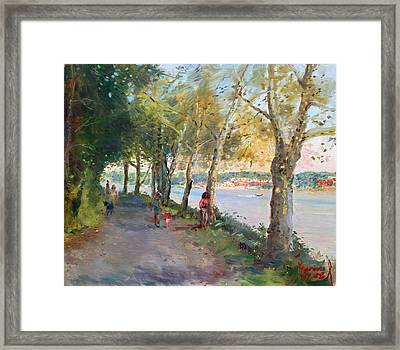 Going For A Stroll Framed Print by Ylli Haruni
