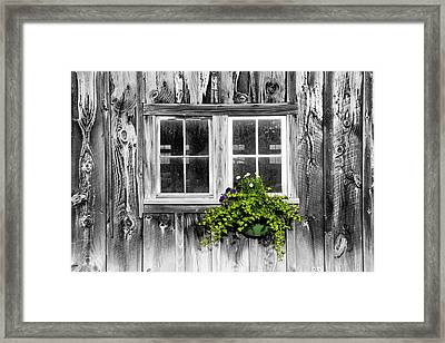 Going Green Framed Print by Greg Fortier