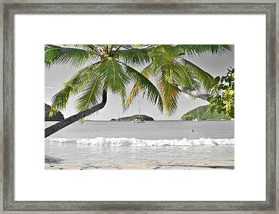 Framed Print featuring the photograph Going Green To Save Paradise by Frozen in Time Fine Art Photography