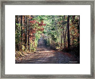 Framed Print featuring the photograph Going Home by Betty Northcutt