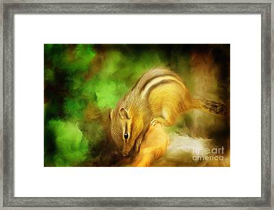 Going Nuts Framed Print