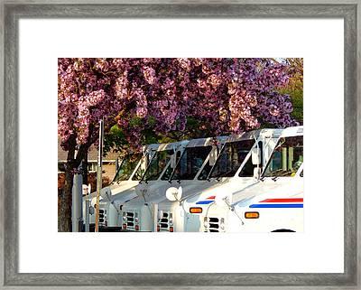 Going Postal Framed Print