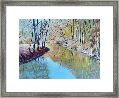 Going Solo Framed Print