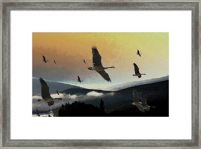 Going South Framed Print