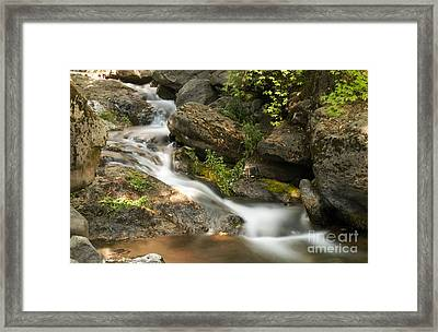 Going To Deer Creek Framed Print