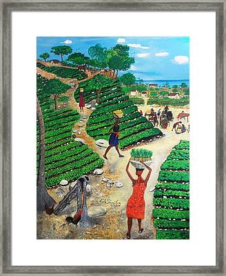Going To The Marketplace #4 -  Walking Through The Terraces Framed Print by Nicole Jean-Louis