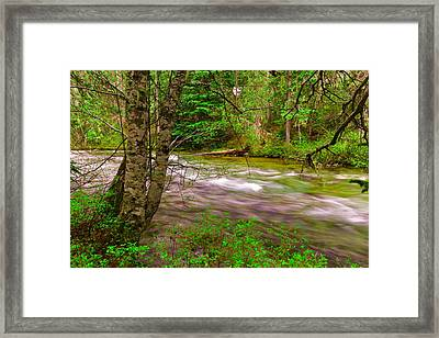 Going To The River Framed Print