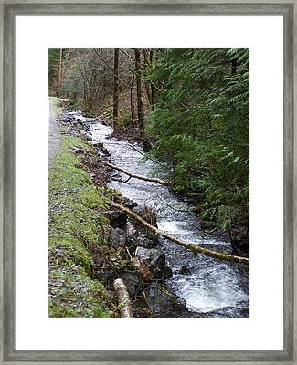 Going Upstream Framed Print by Laurie Kidd