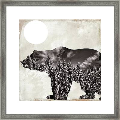 Going Wild Bear Framed Print by Mindy Sommers