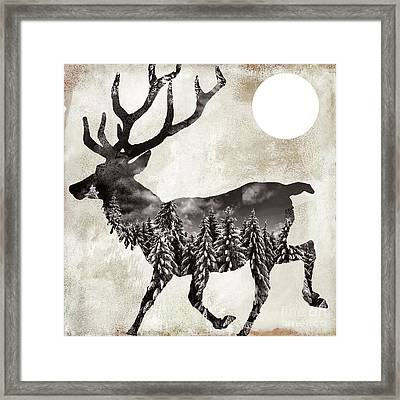 Going Wild Deer Framed Print by Mindy Sommers