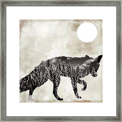 Going Wild Fox Framed Print by Mindy Sommers