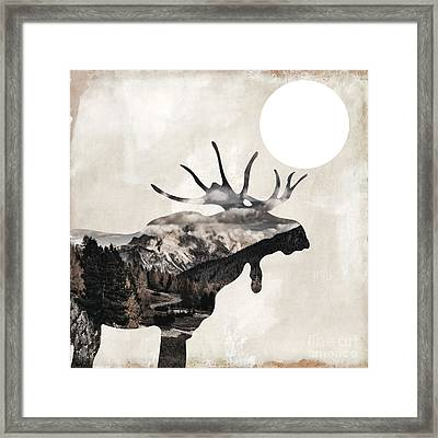 Going Wild Moose Framed Print by Mindy Sommers