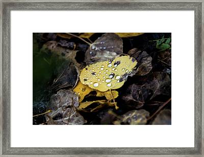 Gold And Diamons Framed Print