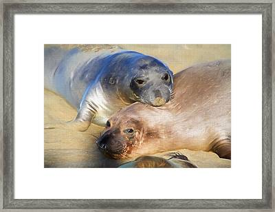 Gold And Silver Framed Print by Donna Kennedy