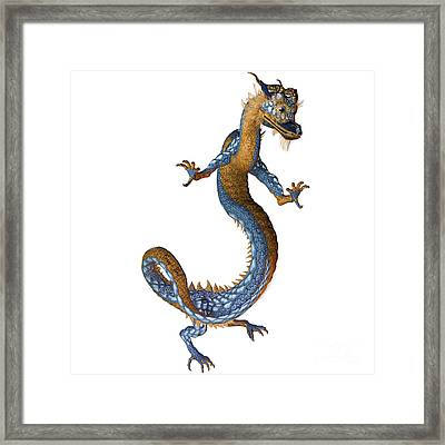 Gold Blue Dragon Framed Print by Corey Ford