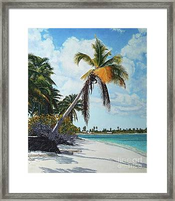 Gold Coconut Framed Print