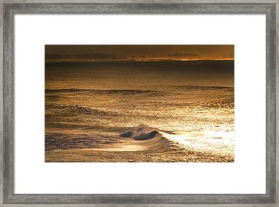 Gold Dust Framed Print by Sean Davey