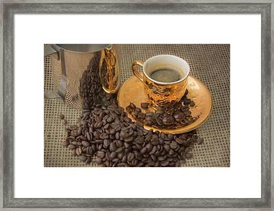 Gold Energizer Framed Print by Pamela Williams